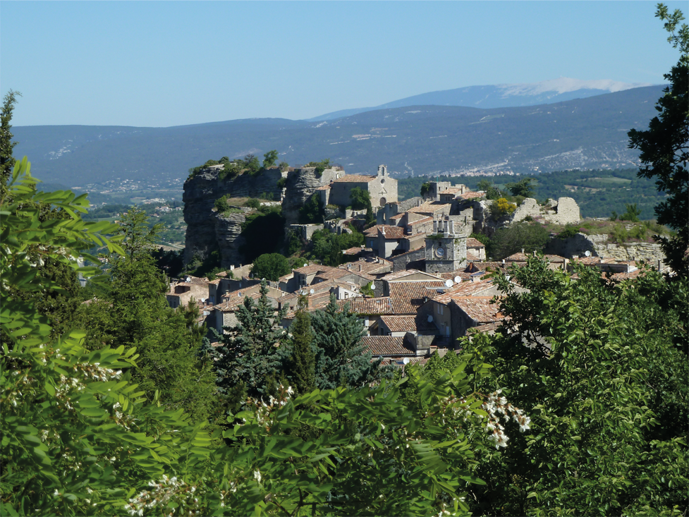 Luberon � Wild Flowers in the Hills of Provence - Susan Worner Tours